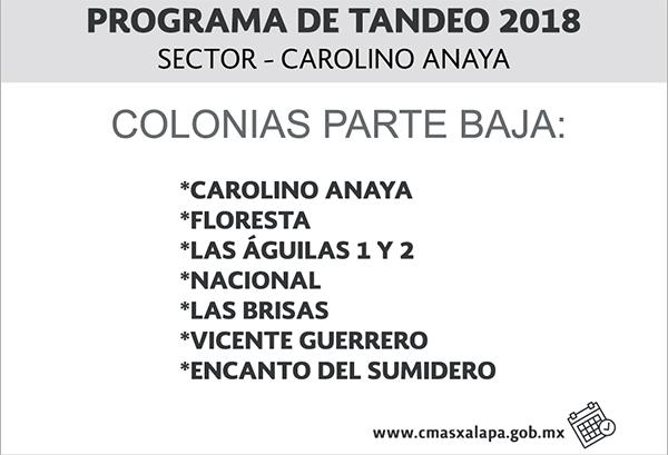 Tandeo Carolino B