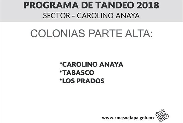 Tandeo Carolino C