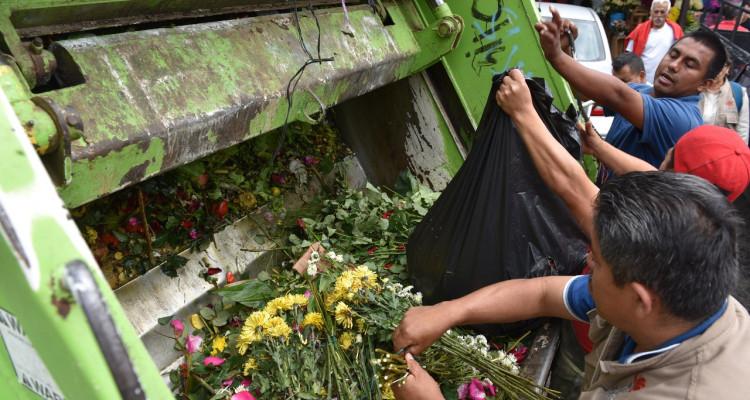 Flores basura