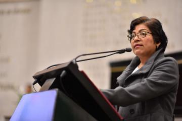 Diputada María del Rocío Pérez Pérez