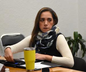 Dulce María Méndez de la Luz Dauzón